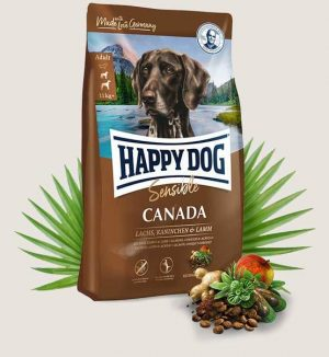 happy dog sensible canada